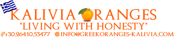 Greek Oranges - Kalivia